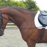 Shires Training Reins
